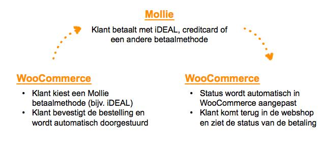 Stappen voor Mollie iDEAL betalingen in WooCommerce
