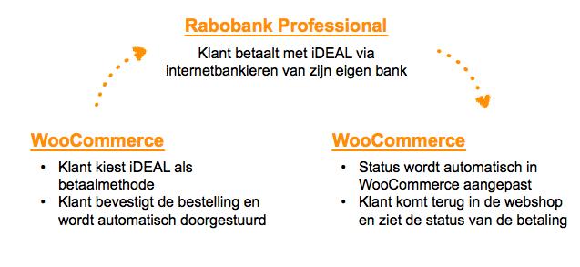 Stappen voor Rabobank iDEAL Professional betalingen in WooCommerce